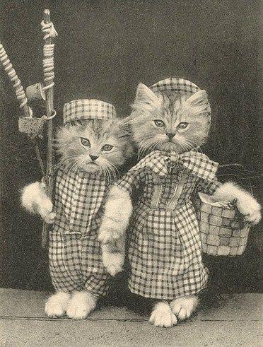 Girl With Kitten Book