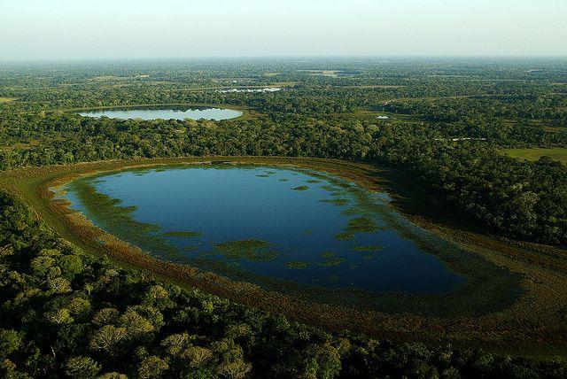 Pantanal by Fernando Quevedo, via Flickr