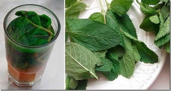 ONE GLASS OF THIS DRINK AND YOUR LIVER WILL SHINE AGAIN! - Guide for Healthy Tips