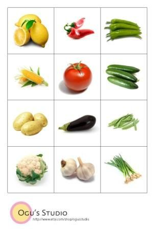 instant download vegetable flash cards memory card game play and learn 24 vegetables