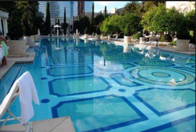 Bellagio Pools Bellagio Hotel Las Vegas Bellagio Las Vegas Pool