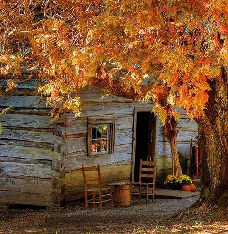 Fall cabin.