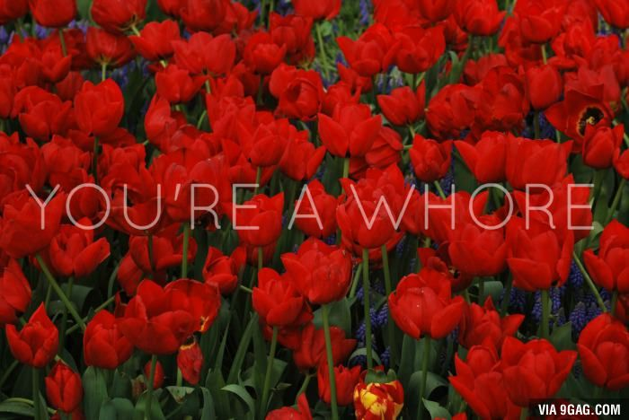 Tell her with flowers