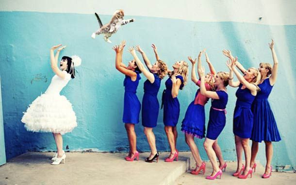 Brides Throwing Cats – Replace bridal #bouquets with #cats... have some fun with your #wedding photos!