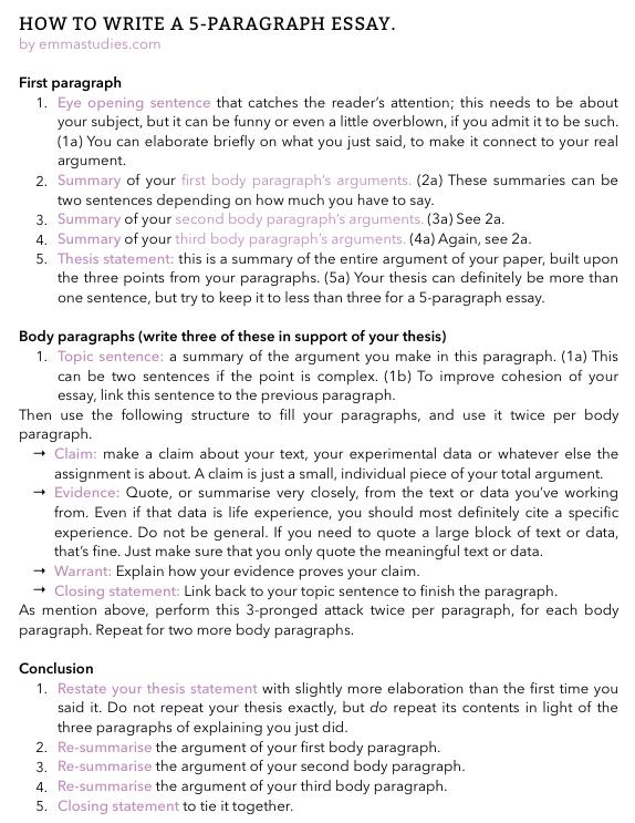 Emmas Studyblr essay writing tips paragraph school student help – School Essay