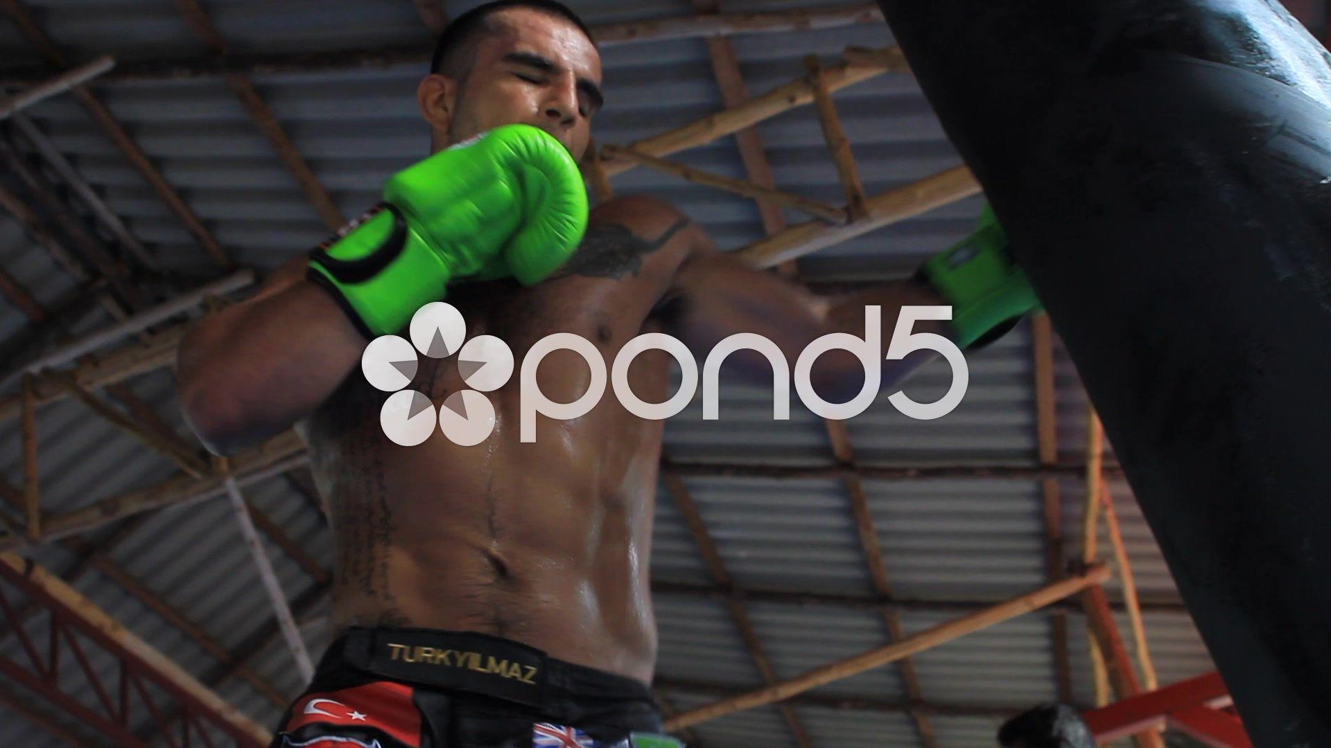 Mma athlete muay thai boxing fight training hitting heavy