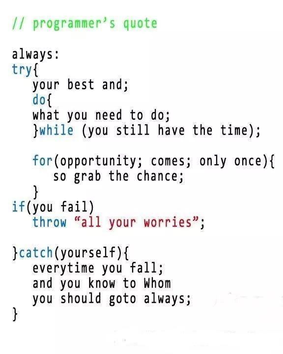 Best Programmer S Quote Programmer Quote Coding Quotes Programming Quote