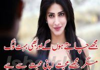 Romantic Love Shayari For Girlfriend In Urdu Two Line Quotes Lines Quotes Romantic Poetry