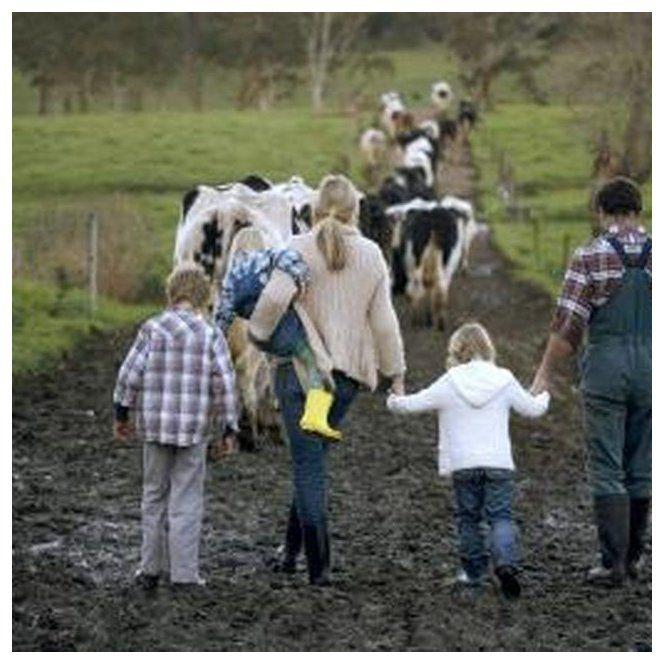 Hobby Farm Tax Deductions Farmideas In 2020 Hobbies For Adults Hobby Farms Hobbies For Men