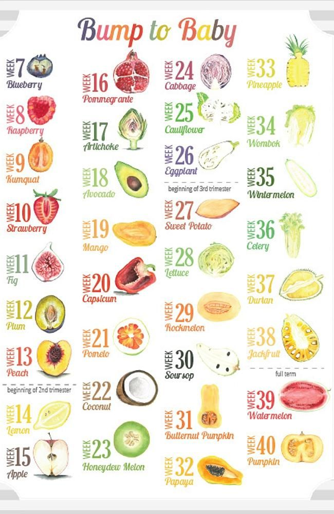 The series of fruits and vegetables representing the baby's size from week  seven to 40.