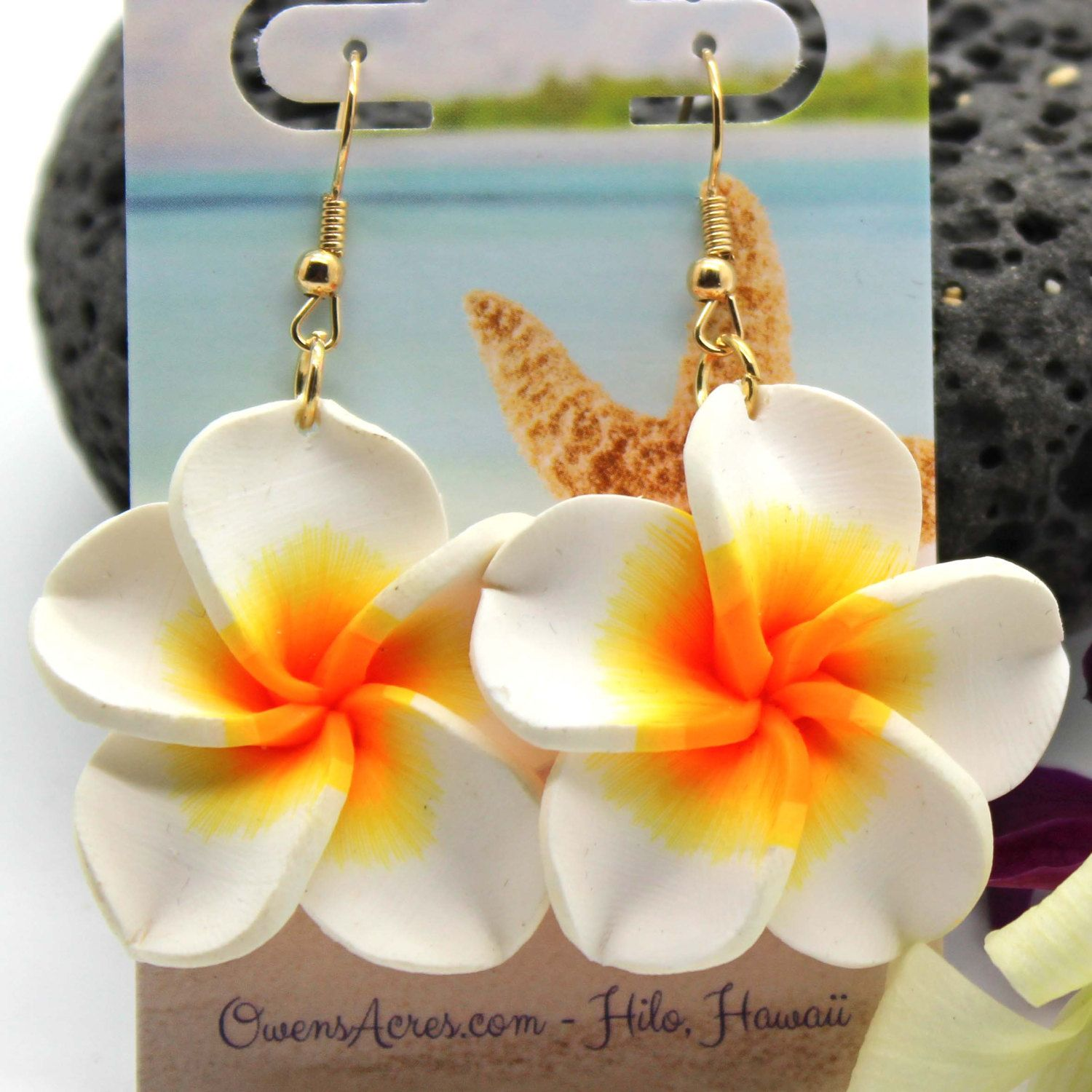 city in panama florida sharks shark s tooth earrings golf club beach wedding