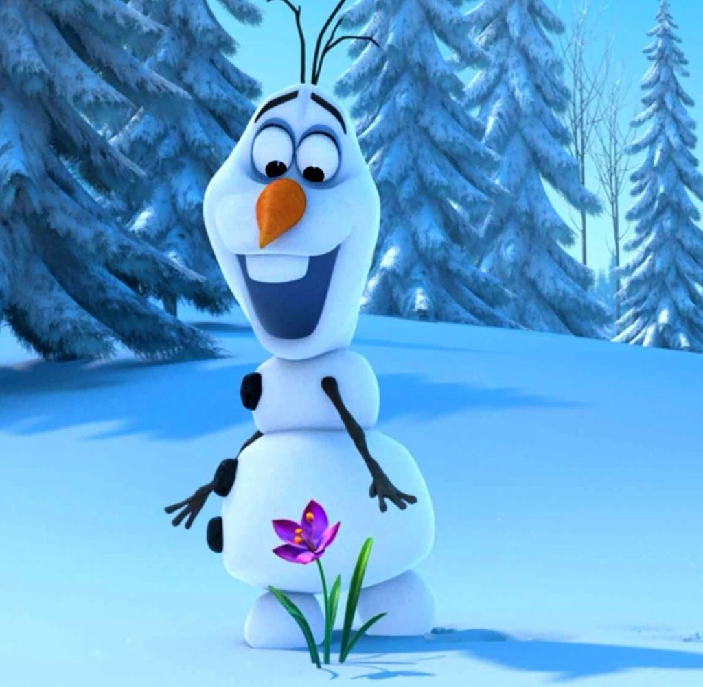 Amazed By A Flower Olaf Frozen Frozen Disney Desenhos Animados