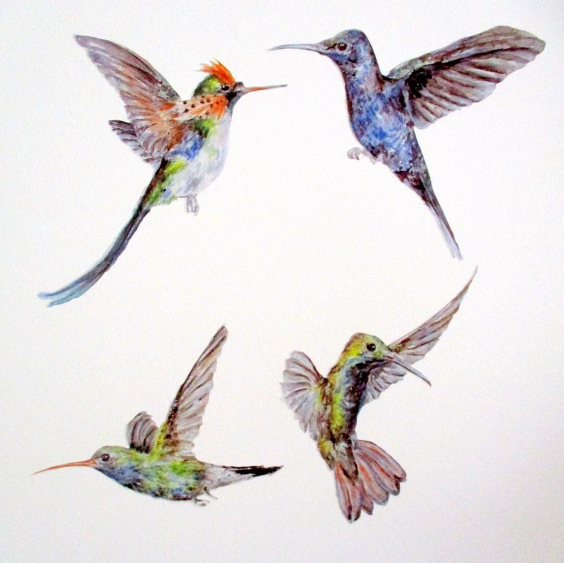 Hummingbird wall stickers humming bird wall decals gift