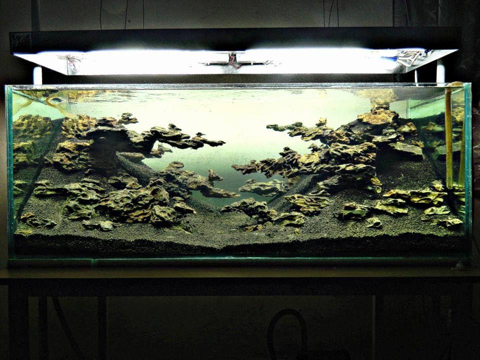 hardscape by frogfoot partha pin by aqua poolkoh aquarium