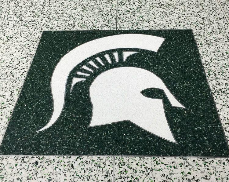 Michigan State University Spartan Helmet Logo (With