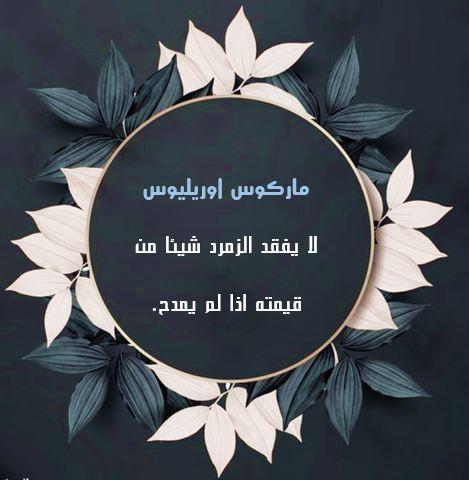 حكم واقوال عن المدح قالها مشاهير العالم معبرة بالصور حكم و أقوال Lettering Praise Letter Board