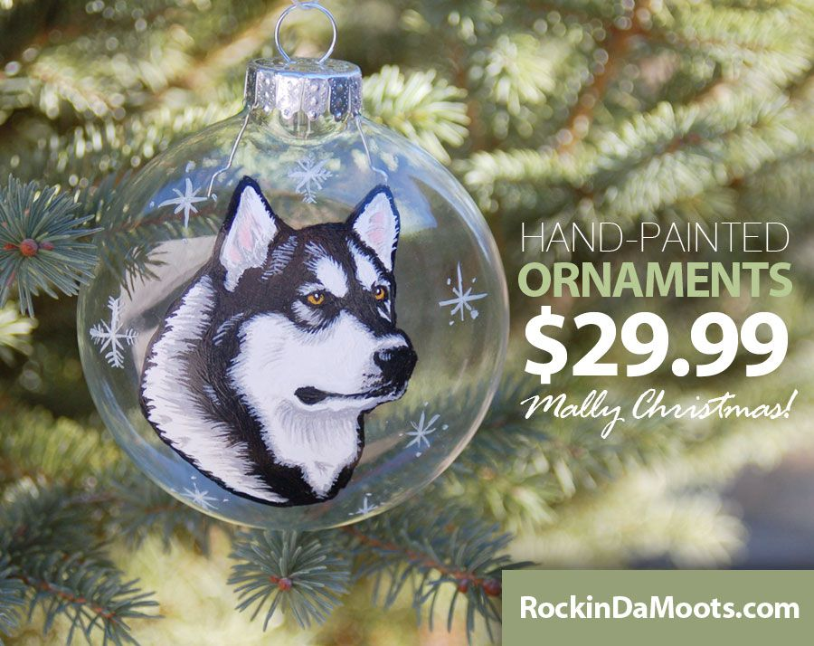 Hand-Painted Glass Ornaments of you dog for ONLY $29.99