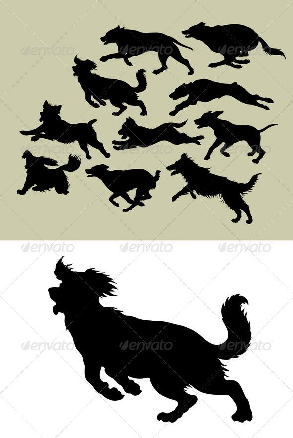Dog Running Silhouettes | Silhouettes, Dog and Stenciling