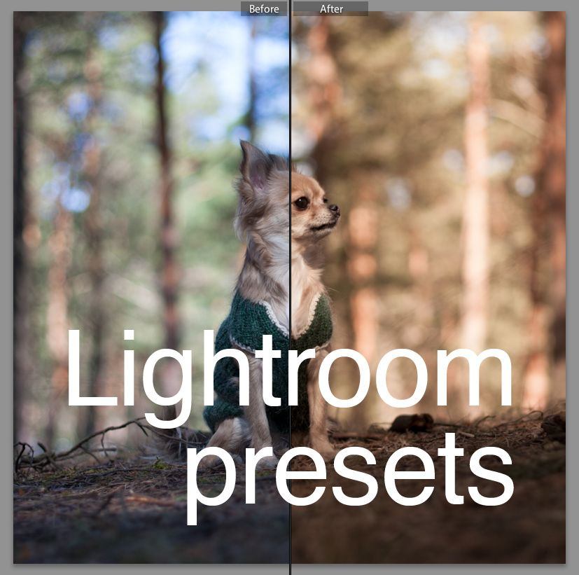 Presets for Lightroom
