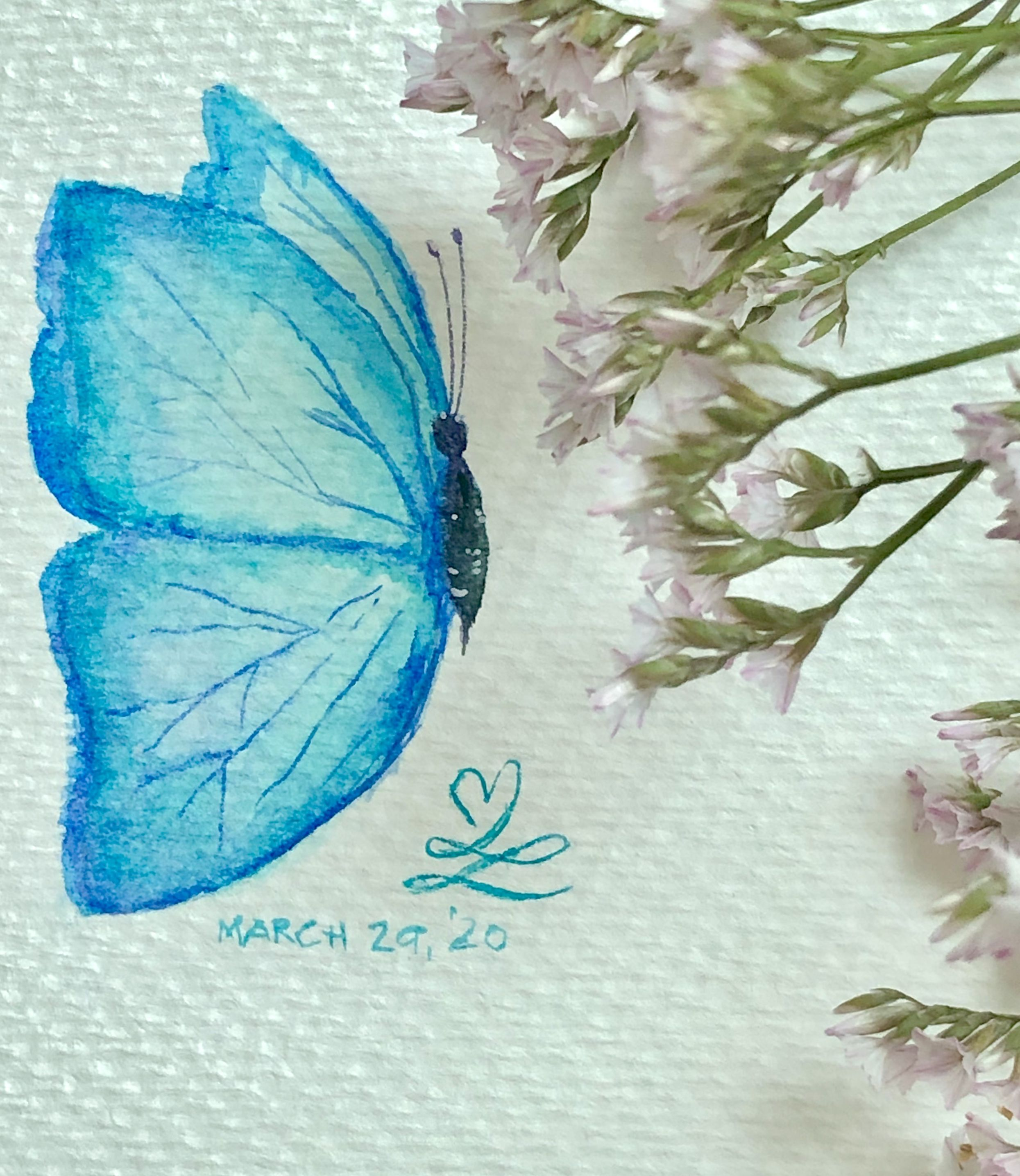 #butterfly #watercolor #prang #montmartre  #painting  #art  #mindfulness #drawing #watercolorpainting   #pencil #fabercastell  #derwentpastel #sketch #staedtler  #derwentinktense #winsorandnewton #koi #kuretakezig