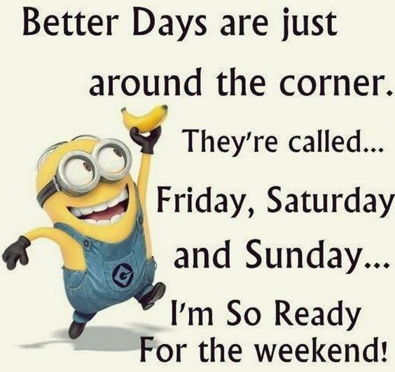 Hump Day Funny Minion Quotes: 35 Funny Minions Quotes And Sayings