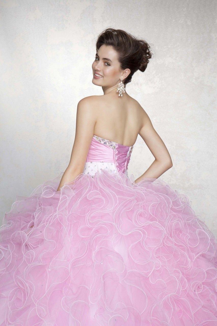 Quinceanera Moda - Quinceanera Dress | My Sister\'s Quinceañera 2015 ...