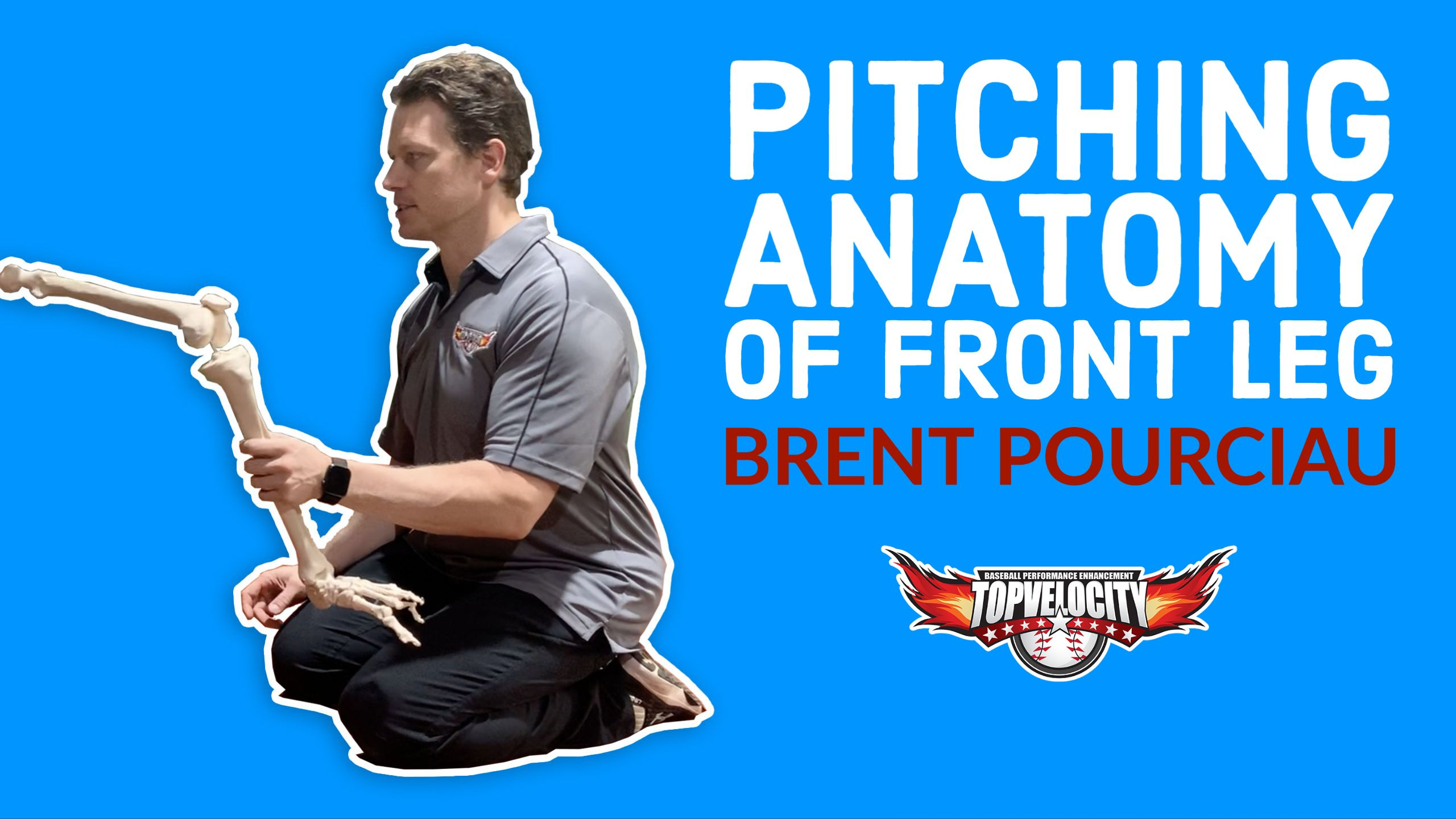 Pitching Anatomy Of The Front Leg In 2020 Pitching Drills Baseball Drills Anatomy