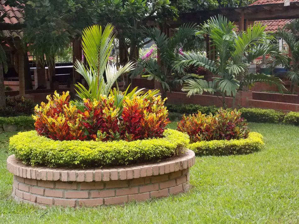 Jardines modernos con palmas buscar con google for Jardines de patios modernos