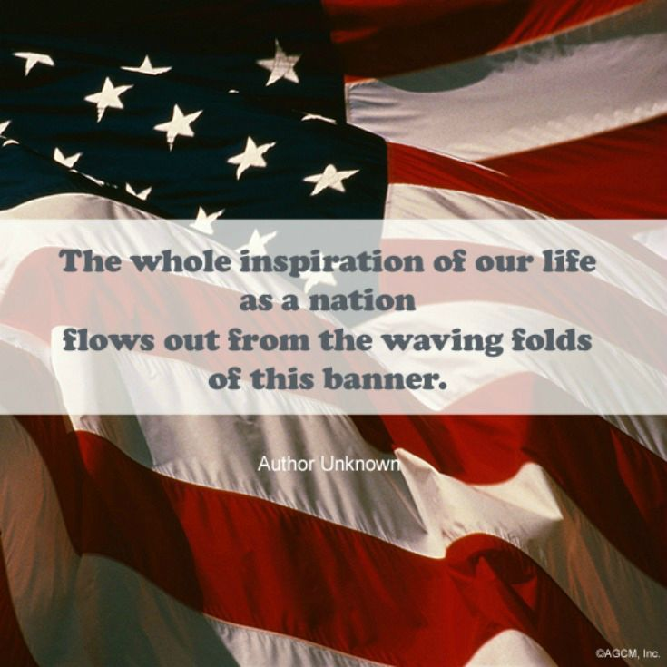 As The Daughter Of A Wwii Veteran I Was Taught To Love And Honor The American Flag Love Thiese Quotes Click On Pin To Pr Patriotic Quotes History Quotes American Flag