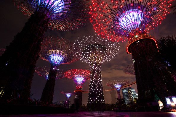 Gardens By The Bay - Supertrees Light Show Opens Bay lights