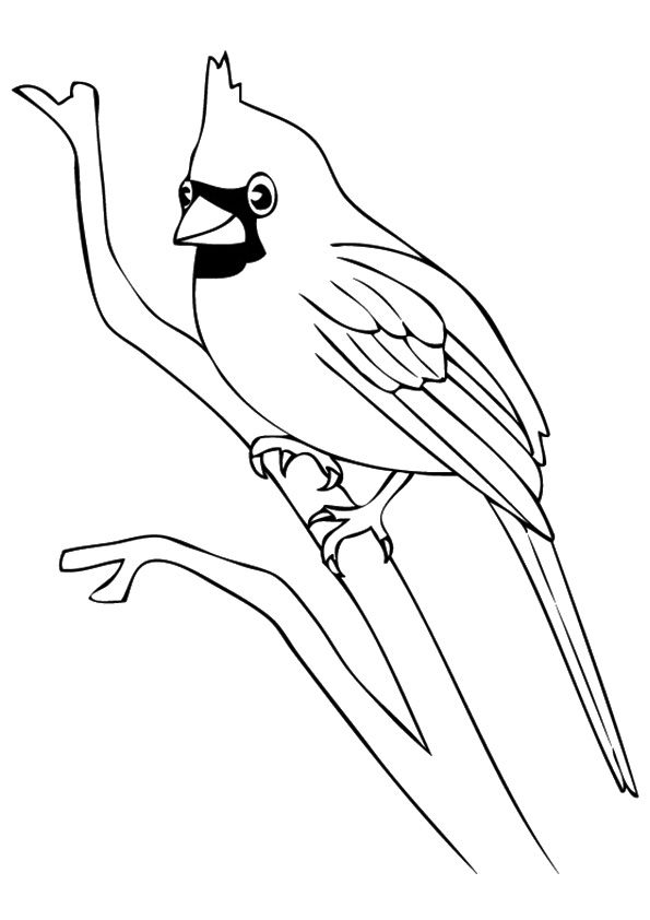 Top 20 Bird Coloring Pages Your Toddler Will Love To Color Bird Coloring Pages Bird Drawings Bird Outline
