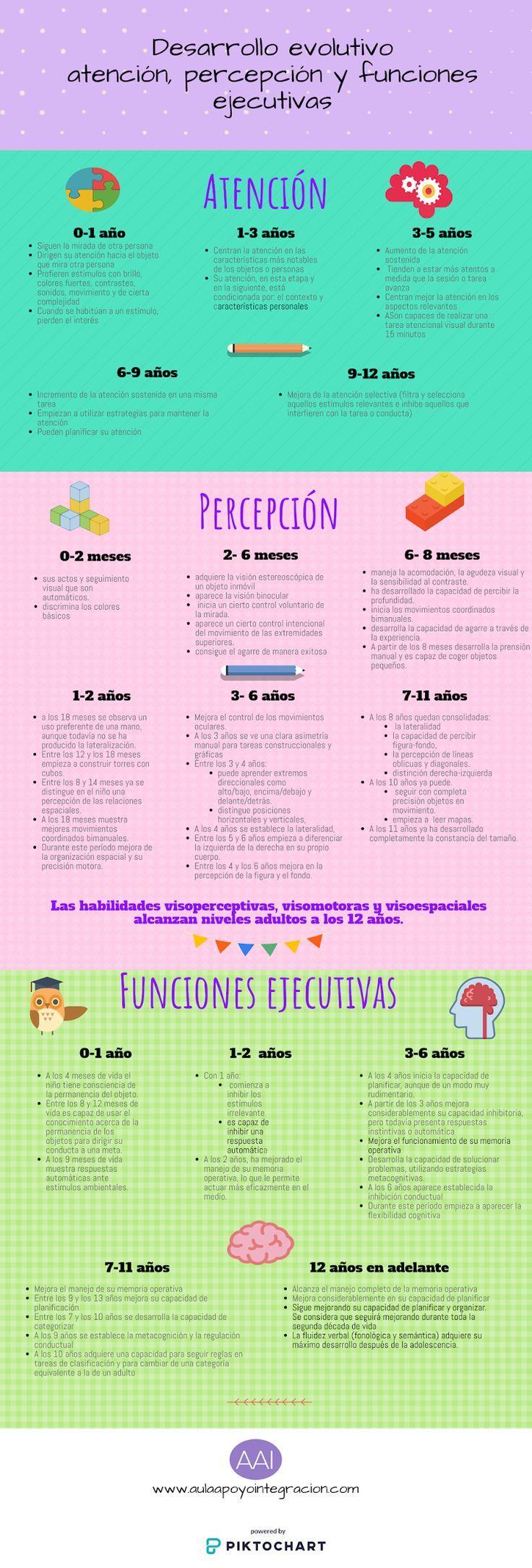 Infografía Desarrollo Perceptivo Atención Y Funciones Ejecutivas Actividadesparaniños Cri Neurociencia Y Educacion Portadores De Texto Educacion Emocional