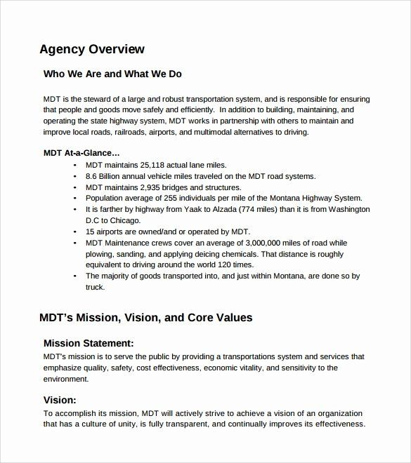 25 Affirmative Action Plan Template In 2020 Action Plan Template