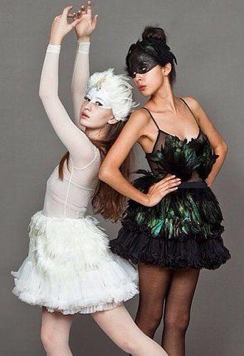 wei er schwarzer schwan kost m selber machen costumes pinterest wei er schwan kost me. Black Bedroom Furniture Sets. Home Design Ideas