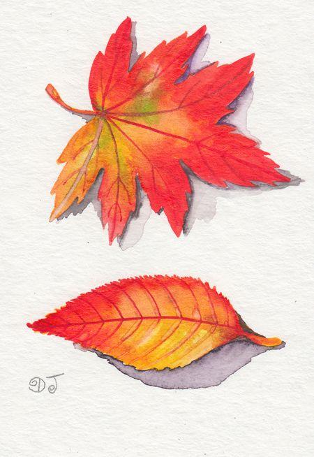 Funny Candies 미리 크리스마스 Flower Painting Leaf Drawing Autumn Art