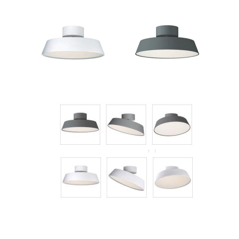 Schwenkbare LED-Deckenleuchte Alba in Silbergrau 1x 12 Watt ...