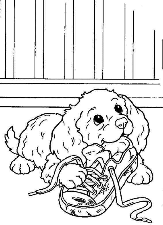 Puppy Eating A Shoe Puppy Coloring Pages Animal Coloring Pages Dog Coloring Page