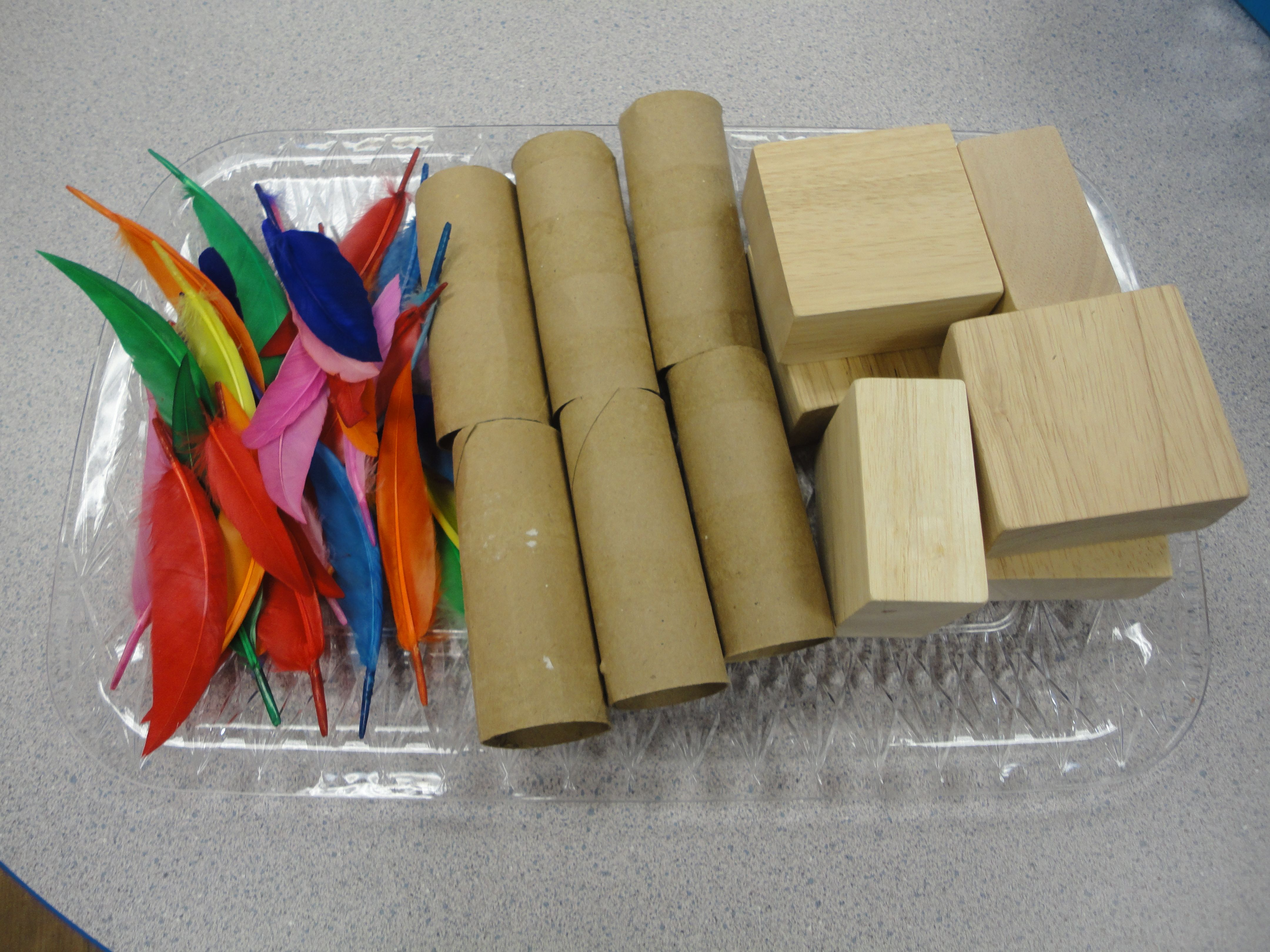 Provocation Tray for our Don't Blow Down The House activity. We listened to the story of the Three Little Pigs and then tried building our own houses with feathers, paper towel rolls, and blocks. Then we blew at them to see if they were strong enough to keep standing. NAEYC Standard: 3.4e.3 Energy and Power Technologies