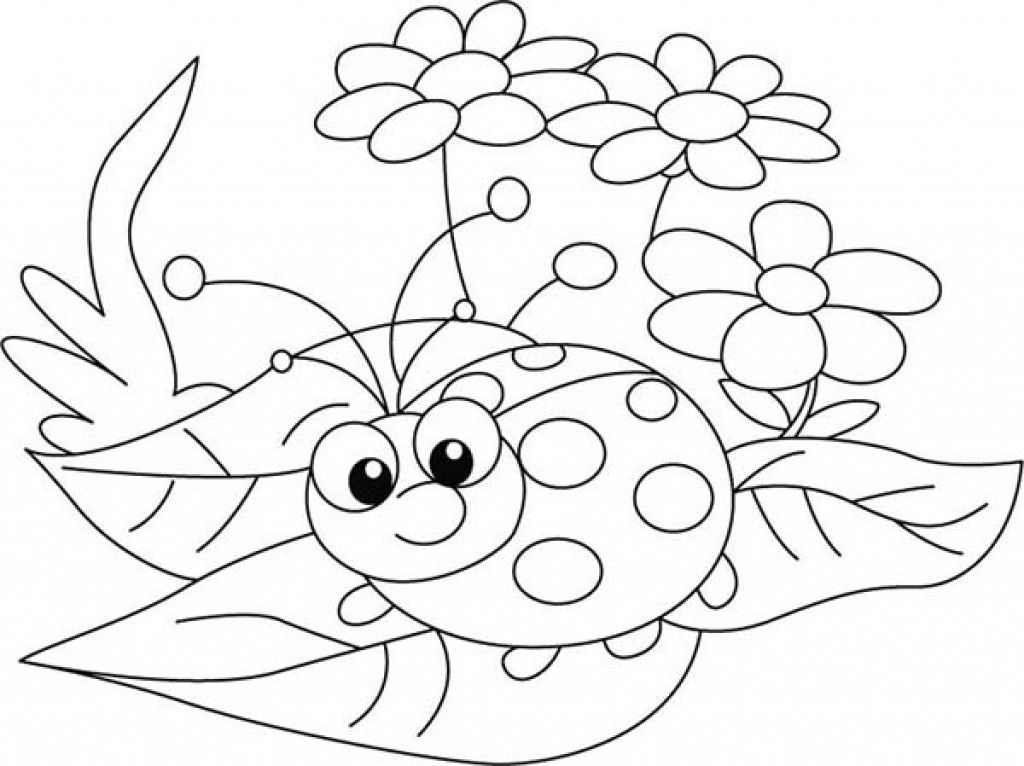 Pin By Kim Schlangen On Color Now Ladybug Coloring Page Bug