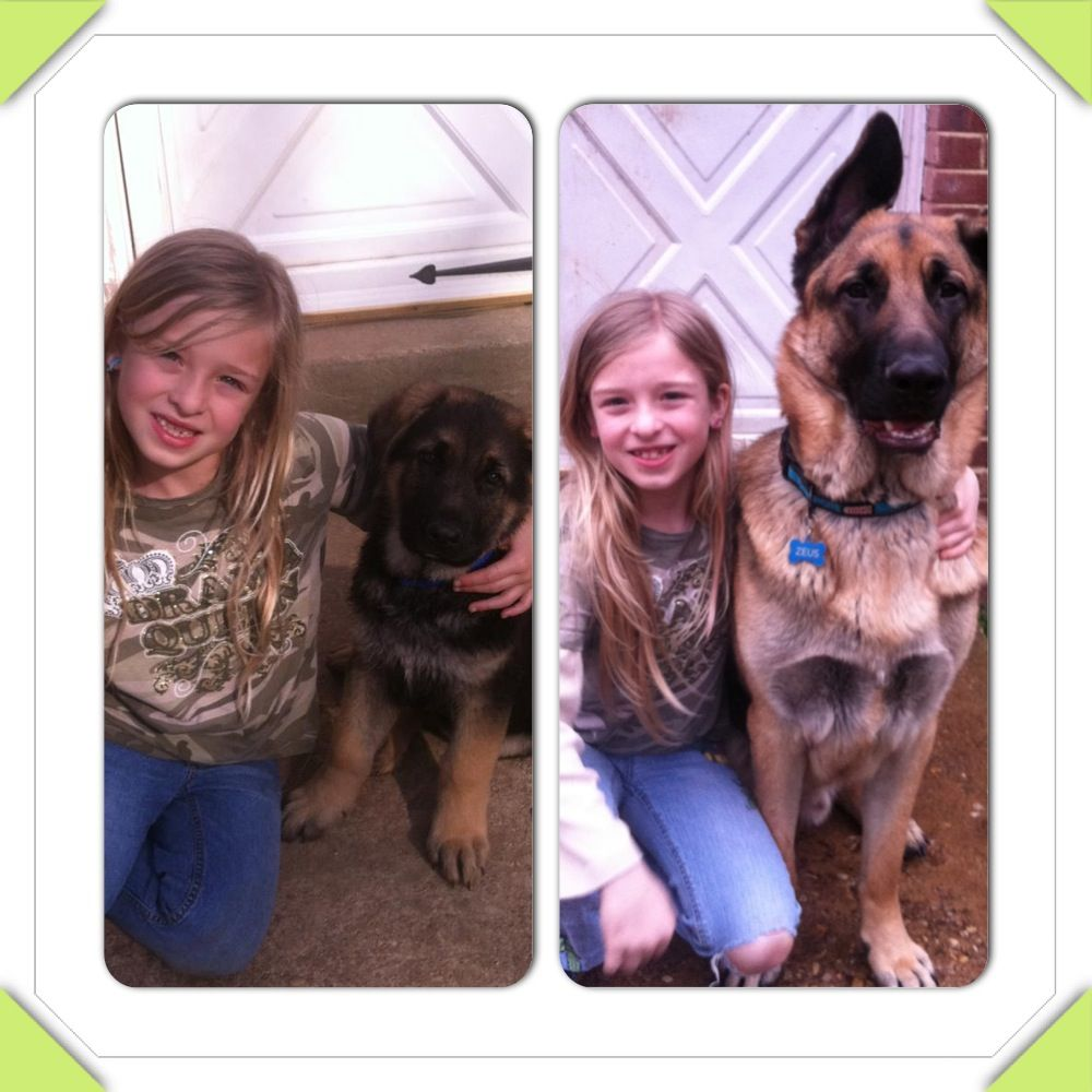 Wow! One year difference! Amazing how fast they grow