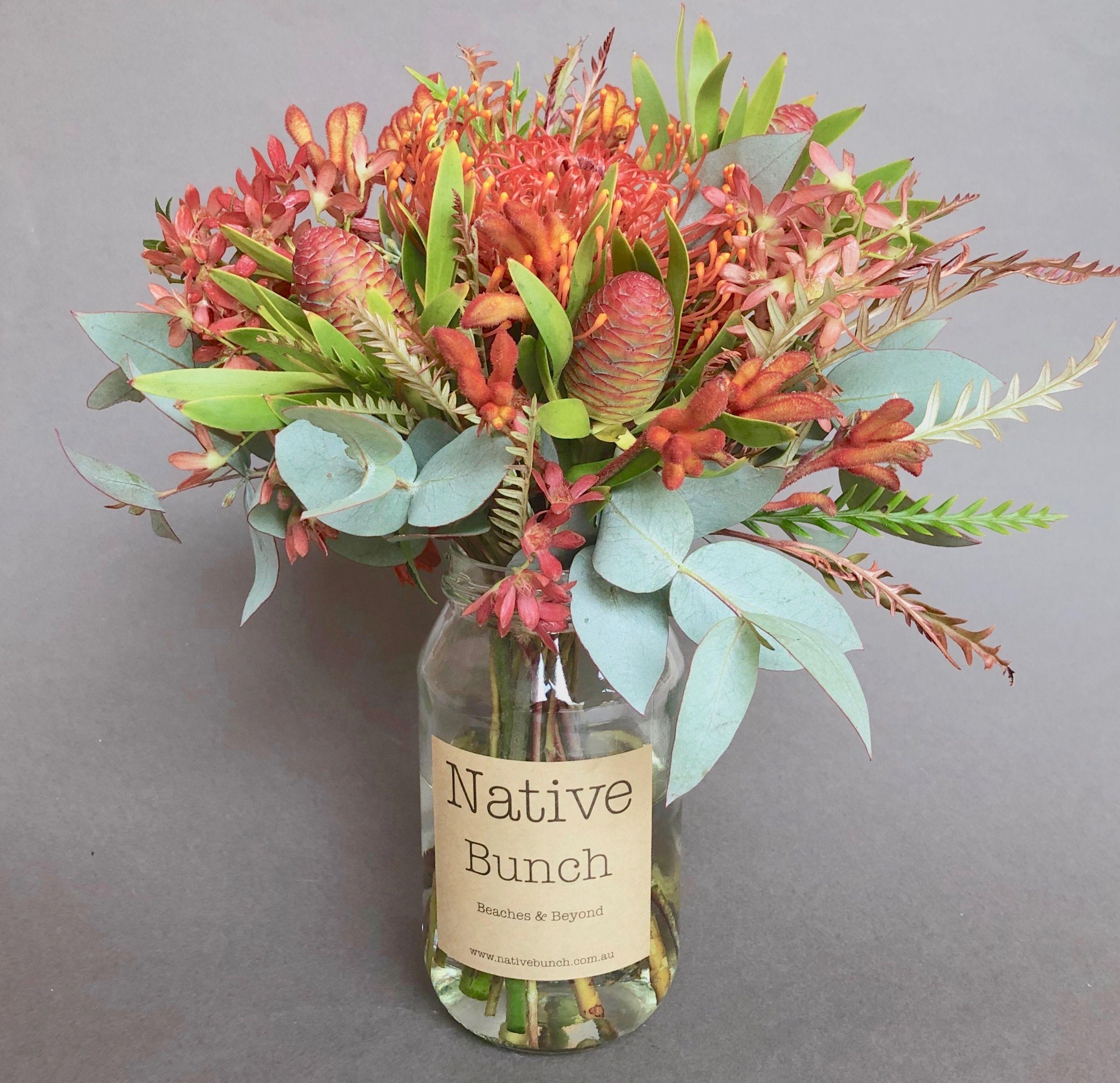 Our Native flower Posy this week Pincushion, Kangaroo