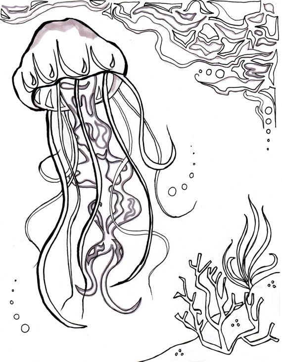 Jellyfish Ocean Ocean Coloring Sheet Aquatic Art Sea Nautical