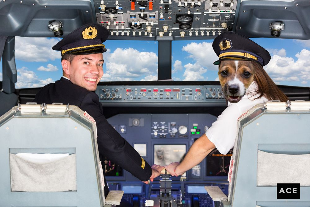 This Air Canada pilot has the right ruff Commercial