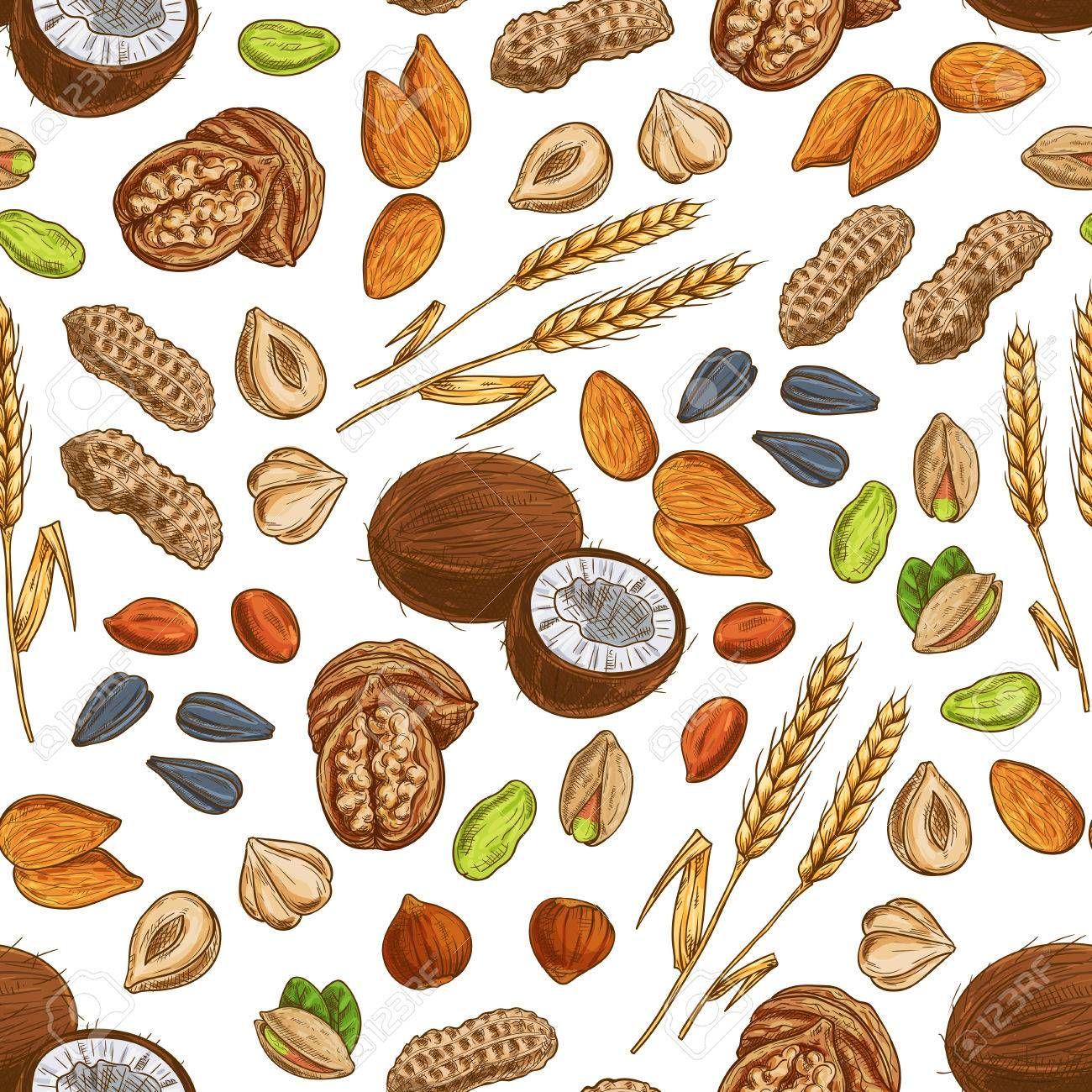 Resultado De Imagen Para Legumbres Frutos Secos Y Cereales Y Sus Derivados En Dibujos Animado En Uno Legumbres Dibujos Dibujos Animados