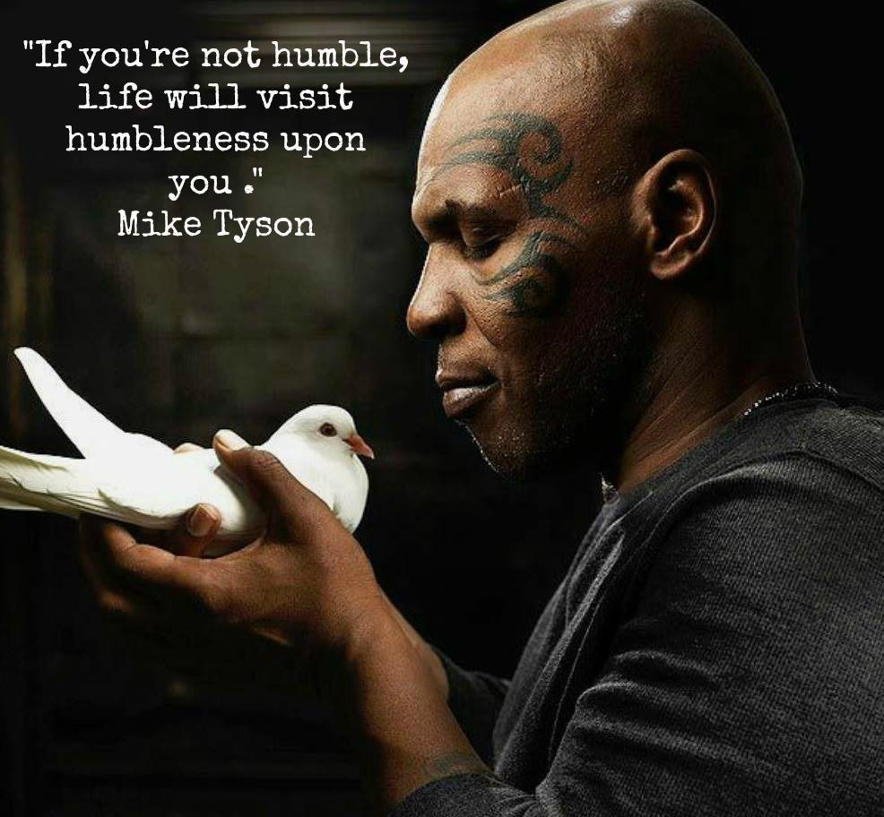 Image result for mike tyson life will humble you