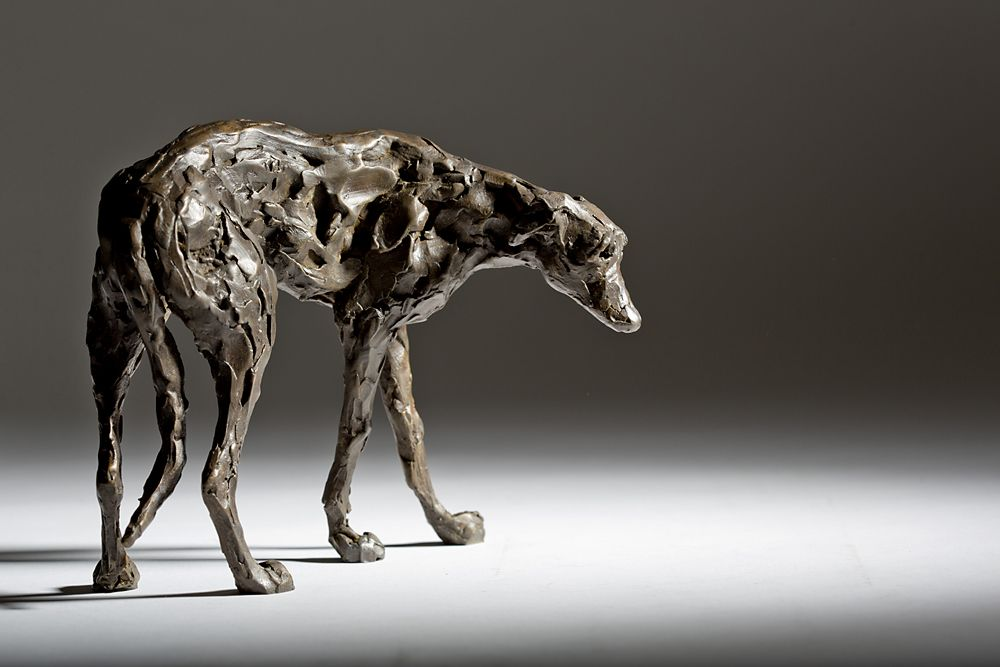 'Looking Down' - Lurcher
