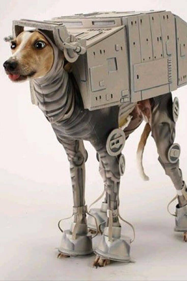23 Unbelievable Halloween Costume Ideas For Your Dog Pet