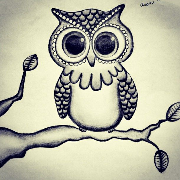 black and white draw drawing indie owl owl drawing pretty