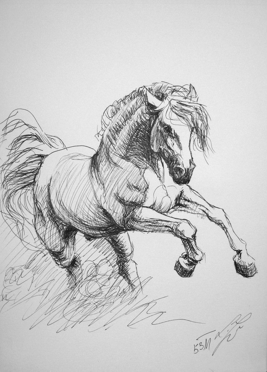 Pura Raza Espanola By Kontinentalka D3b1ayp Jpg 900 1253 Pencil Drawings Easy Animal Drawings Sketches Horse Drawing