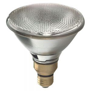 Most energy efficient outdoor flood light bulbs httpnawazsharif most energy efficient outdoor flood light bulbs aloadofball Gallery